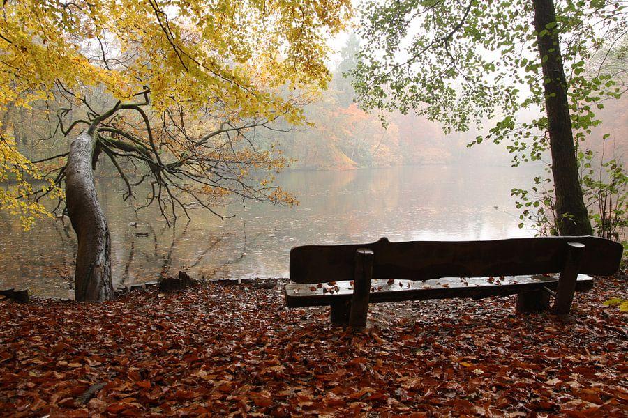 Een bankje met uitzicht op een meer met sfeervolle herfstkleuren