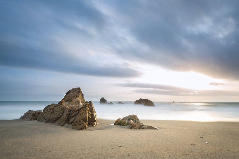 Playa los Angeles van Ronne Vinkx