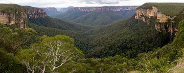 Blue Mountains Panorama, NSW Australie von Chris van Kan
