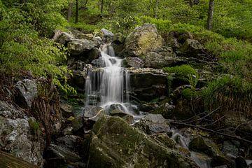 Ninglinspo Waterval Ardennen   (469416) van Wesley Van Vijfeijken