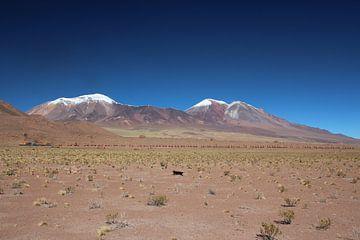 Trein met heel veel wagons, Salar de Ascotán, Vulkaan, Chili van A. Hendriks