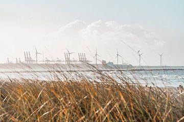 Der Rotterdamer Hafen hinter den Dünen von Marcel Kool