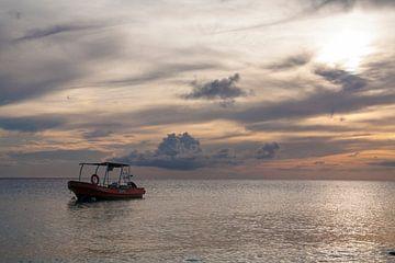 Vissersbootje Cas Abao van By Odessa DC