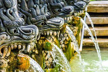 Balinese waterspuwers van Hugo Braun