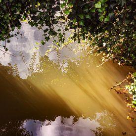 Soleil bas dans l'eau sur Jan van der Knaap
