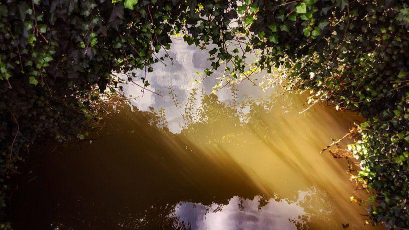 Laagstaande zon in het water van Jan van der Knaap