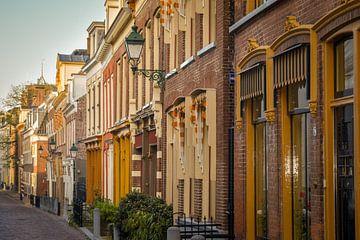 Charakteristische niederländische Häuser in Leeuwarden von Janet Kleene