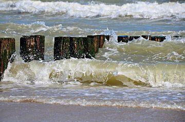 zeepalen en golven strand Domburg