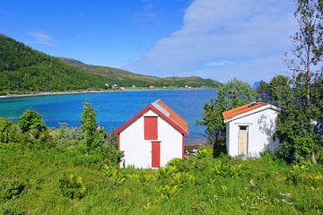 Fjordside Cabins van Gisela Scheffbuch