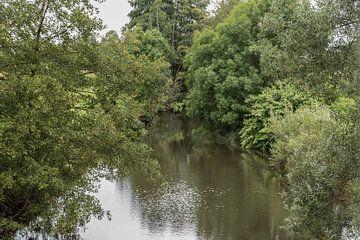 Wolfsfeld de groene rivier van ProPhoto Pictures