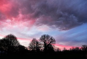Roze wolken van