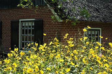 Bloemen en boeren van Pieter Veninga