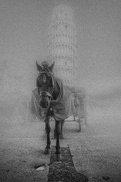 Paard met deken Pisa Toscane van Frank Andree