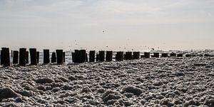 Zee vol met schuim van