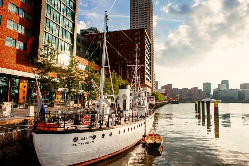 De Castor in de Rijnhaven Rotterdam van Pieter Wolthoorn