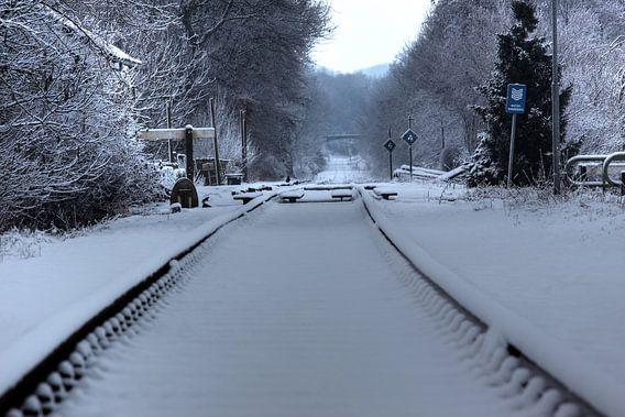 Miljoenenlijntje in de sneeuw van MSP Canvas
