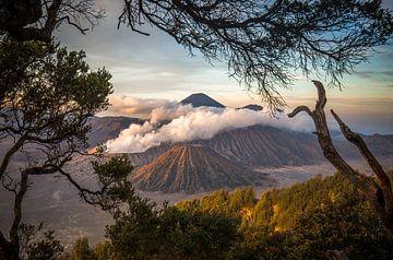 Mount Bromo von Claudio Duarte