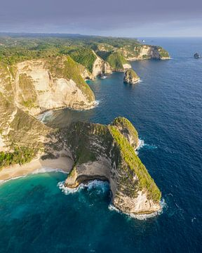 Mooi overzicht van Kelingking Beach, Nusa Penida van Nick de Jonge - Skeyes