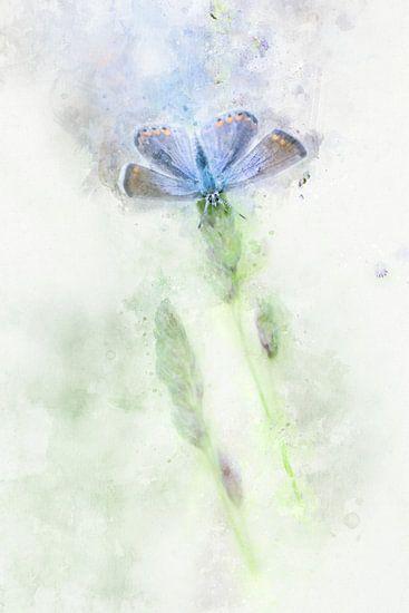 Vlinder 15