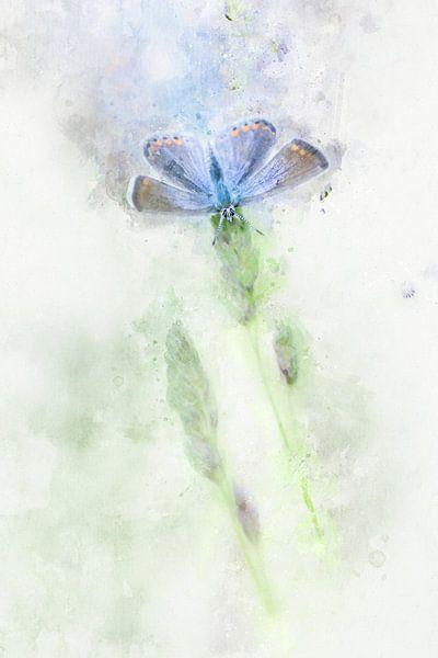 Vlinder 15 van Silvia Creemers