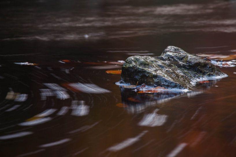In the Flow sur Harold van den Berge