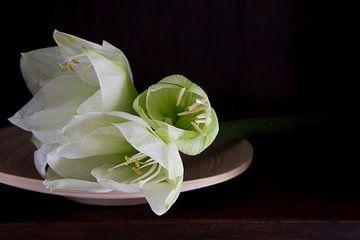 Witte lelies op bamboe schaal von Marion Moerland