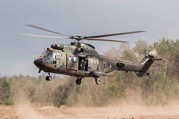Hubschrauber in Staubwolke