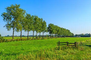 Prachtig Nederlandslandschap van
