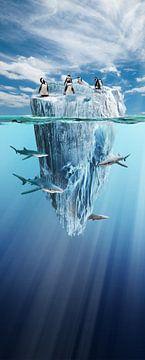 ijsberg van Dray van Beeck