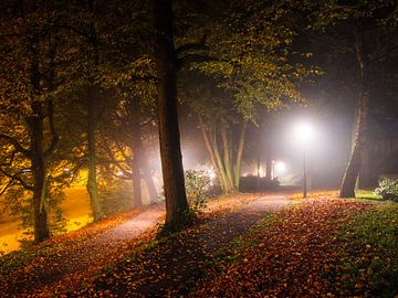 Straat licht herfst