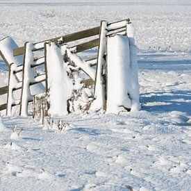Besneeuwd hekwerk in polderlandschap van Beeldbank Alblasserwaard