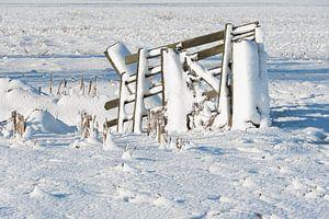 Besneeuwd hekwerk in polderlandschap