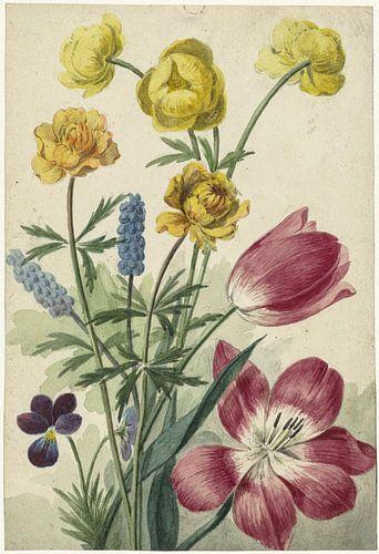 Boeket van tulpen, viooltjes, blauwe druifjes en dotters, Willem van Leen van Hollandse Meesters