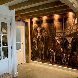 Kundenfoto: Kühe im alten Kuhstall von Inge Jansen, auf nahtloser fototapete