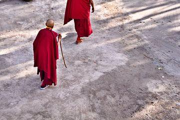 Monks van Christian Poels