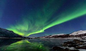 Noorderlicht, poollicht of Aurora Borealis over het eiland Senja in Noord-Noorwege