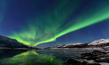 Nordlichter über Senja-Insel in Nord-Norwegen von Sjoerd van der Wal