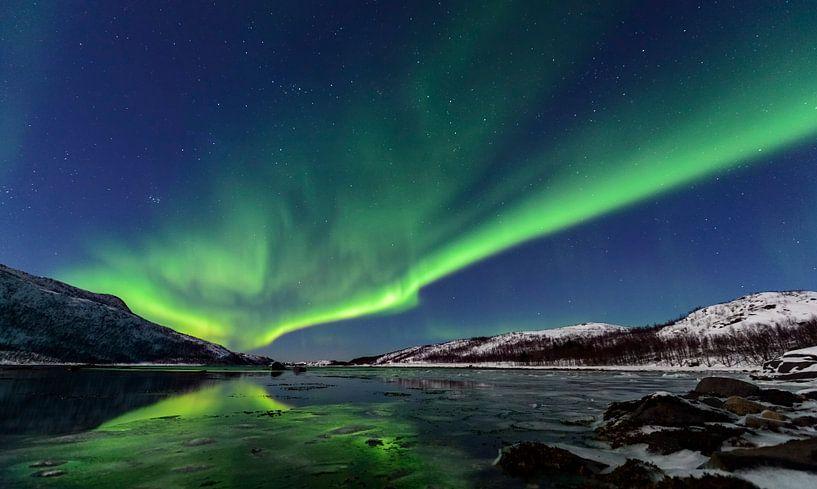 Noorderlicht, poollicht of Aurora Borealis over het eiland Senja in Noord-Noorwege van Sjoerd van der Wal