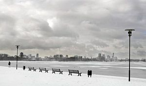 Kralingse bos Rotterdam winter
