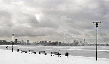 Kralingse bos Rotterdam winter van Alain Ulmer