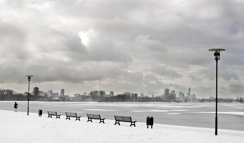 kralingse bos Rotterdam von Alain Ulmer