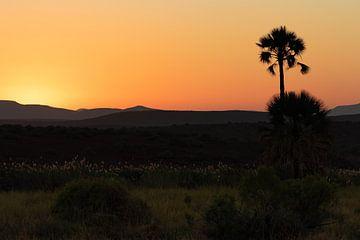 Zonsondergang in Palmwag Namibië van GoWildGoNaturepictures
