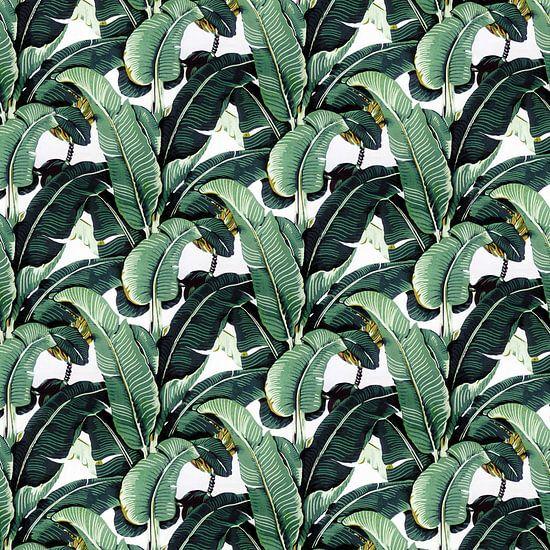 Matinique Banana Leaf 3 van Marieke de Koning