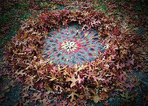 Herfst zon van Mies Heerma
