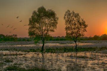 zonsondergang omgeving Nijverdal van Hans Lubout