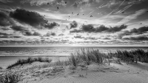 zonsondergang bij de duinen