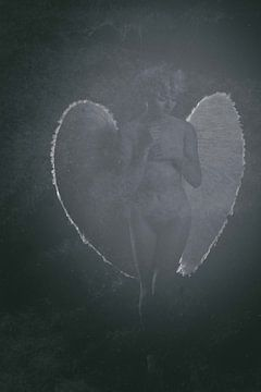 Engel 15 von Jeroen Schipper
