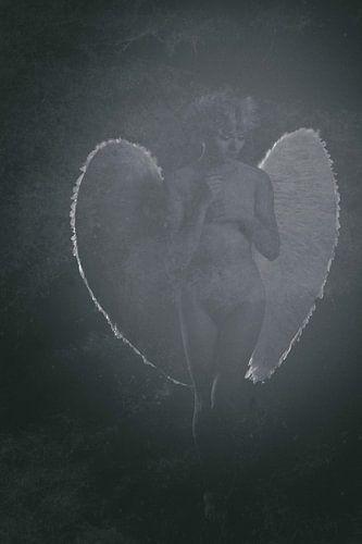 Engel 15 van