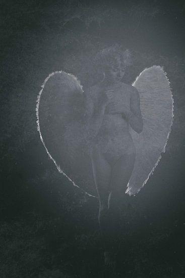Engel 15