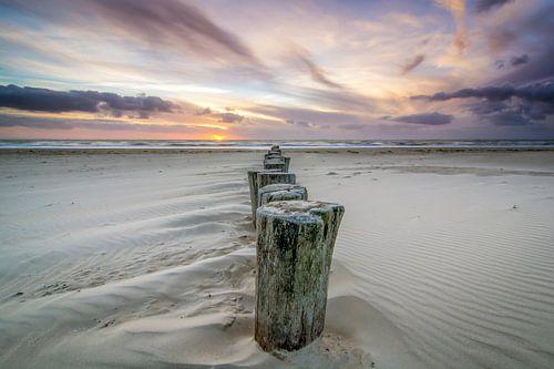 Palen in het zand